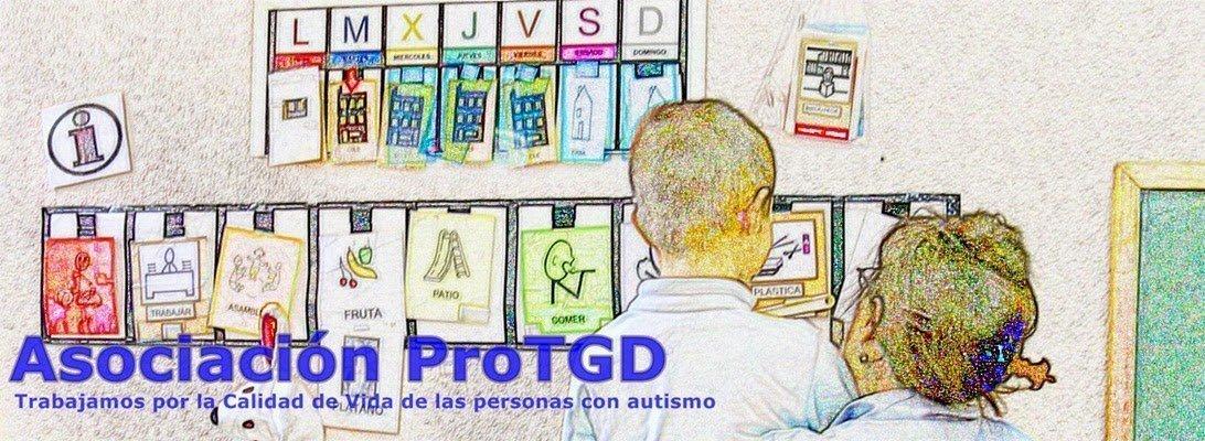 portada página web asocación PROTGD